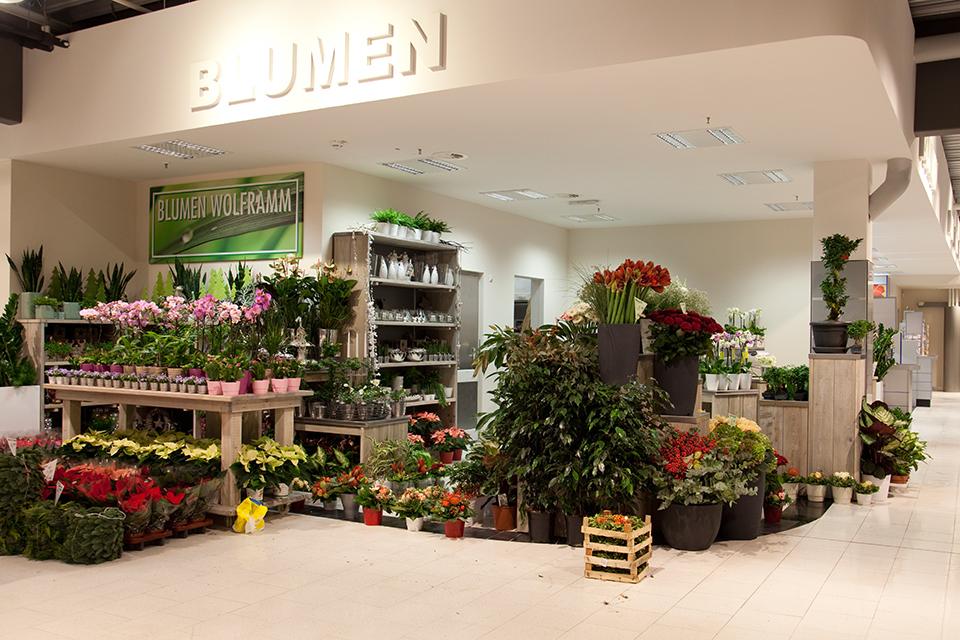 Suitbertusstraße - Blumen Wolframm